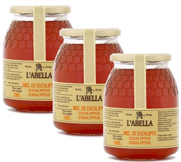 Eukalyptushonig aus Spanien - Premium Qualität- reines Naturprodukt- kaltgeschleudert- 3 x 1 Kg Glas